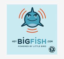 HeyBigFish